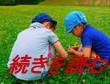 blog.yotsu